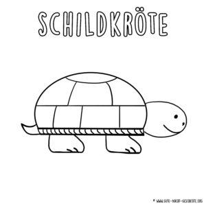 Schildkröte Ausmalbild