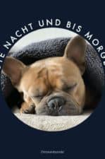 Gute Nacht Bilder: 12 kostenlose Bilder (GIFs) zum Versenden