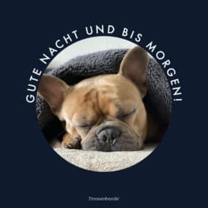 Gute Nacht Gif