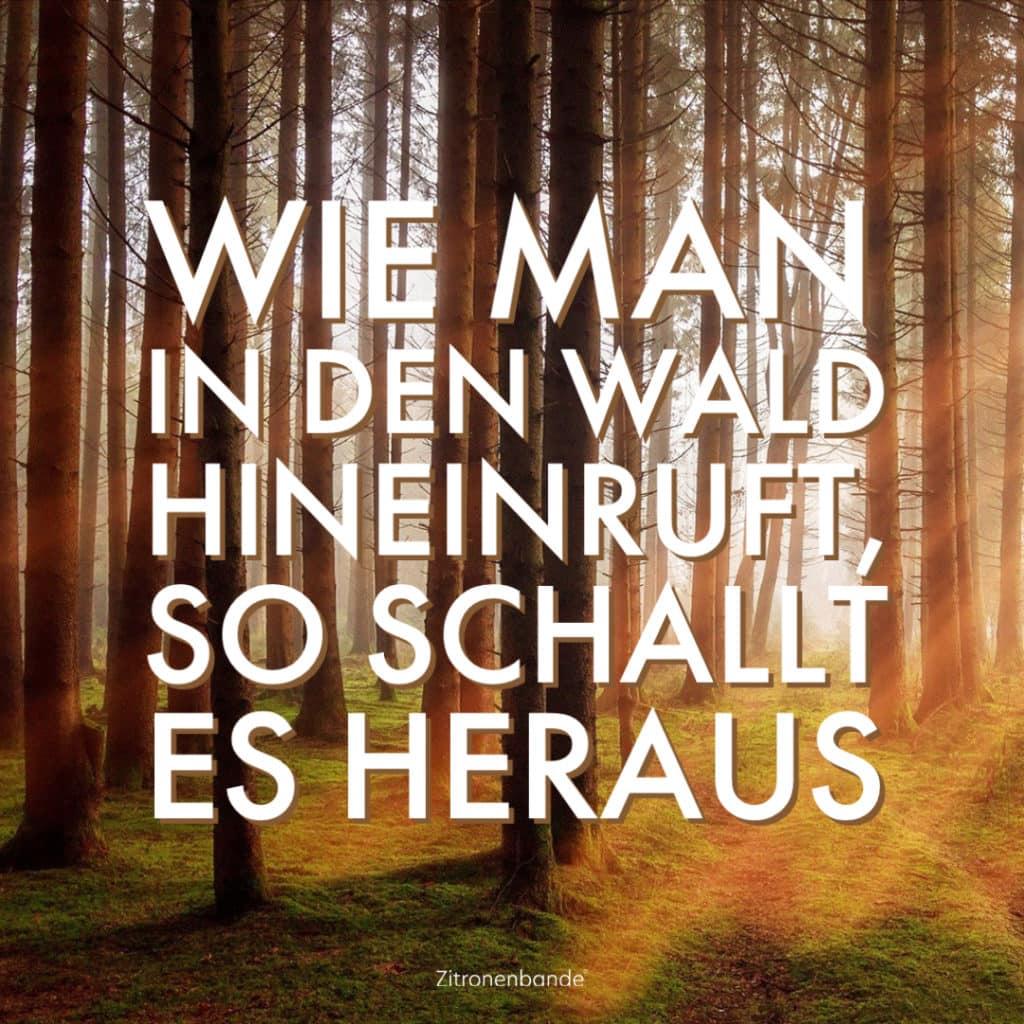 Sprüche 6